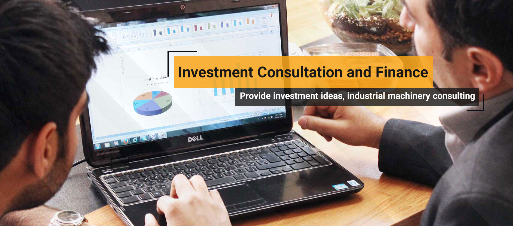 Business Consultation and Investment